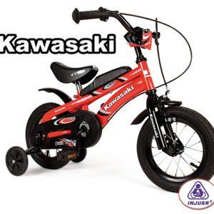 Injusa_Kawasaki__4c02525818e94