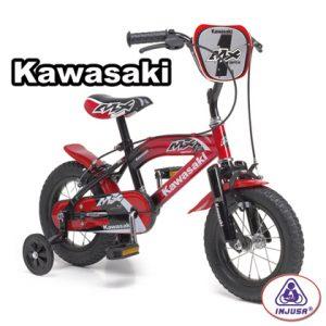 Injusa_Kawasaki__4c025280592df