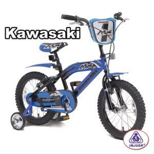 Injusa_Kawasaki__4c0253de4dd6b